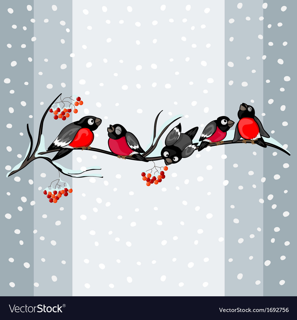 Bullfinch on a branch vector | Price: 1 Credit (USD $1)