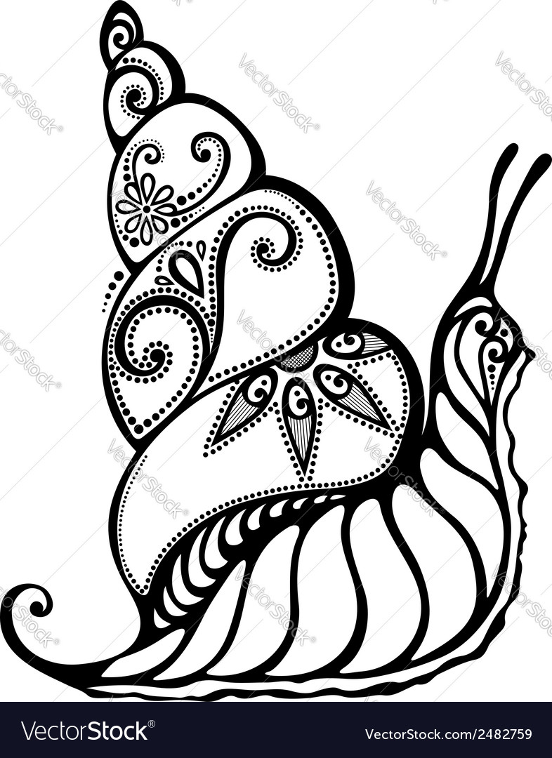 Beautiful snail exotic insect vector | Price: 1 Credit (USD $1)