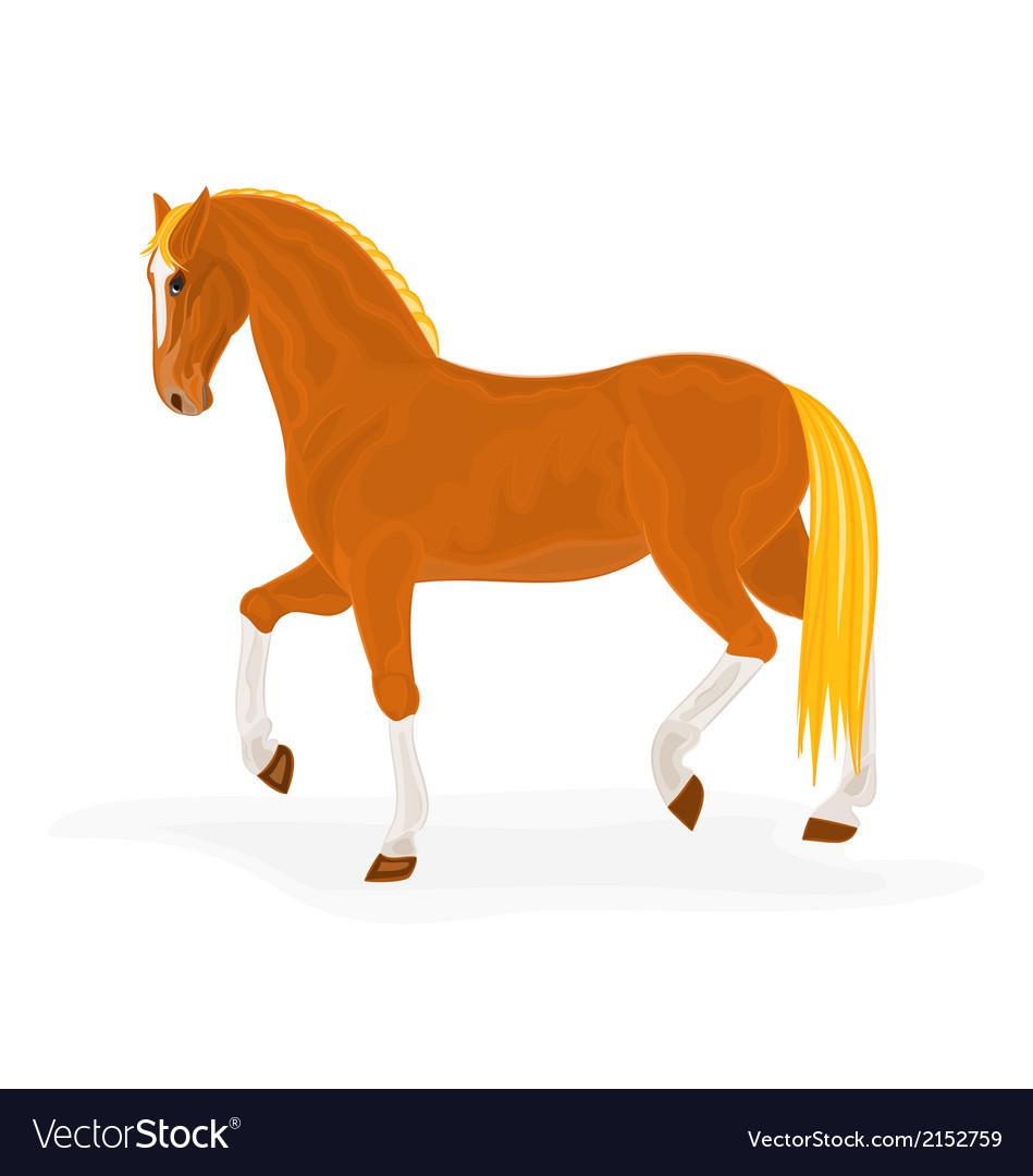 Sorrel-horse vector | Price: 1 Credit (USD $1)