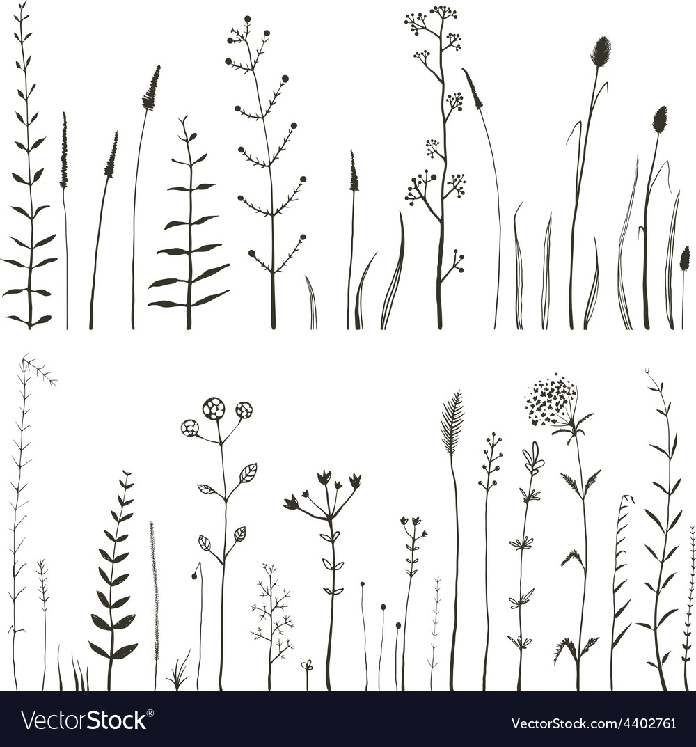 Sketchy wild field flowers and grass on white vector | Price: 1 Credit (USD $1)