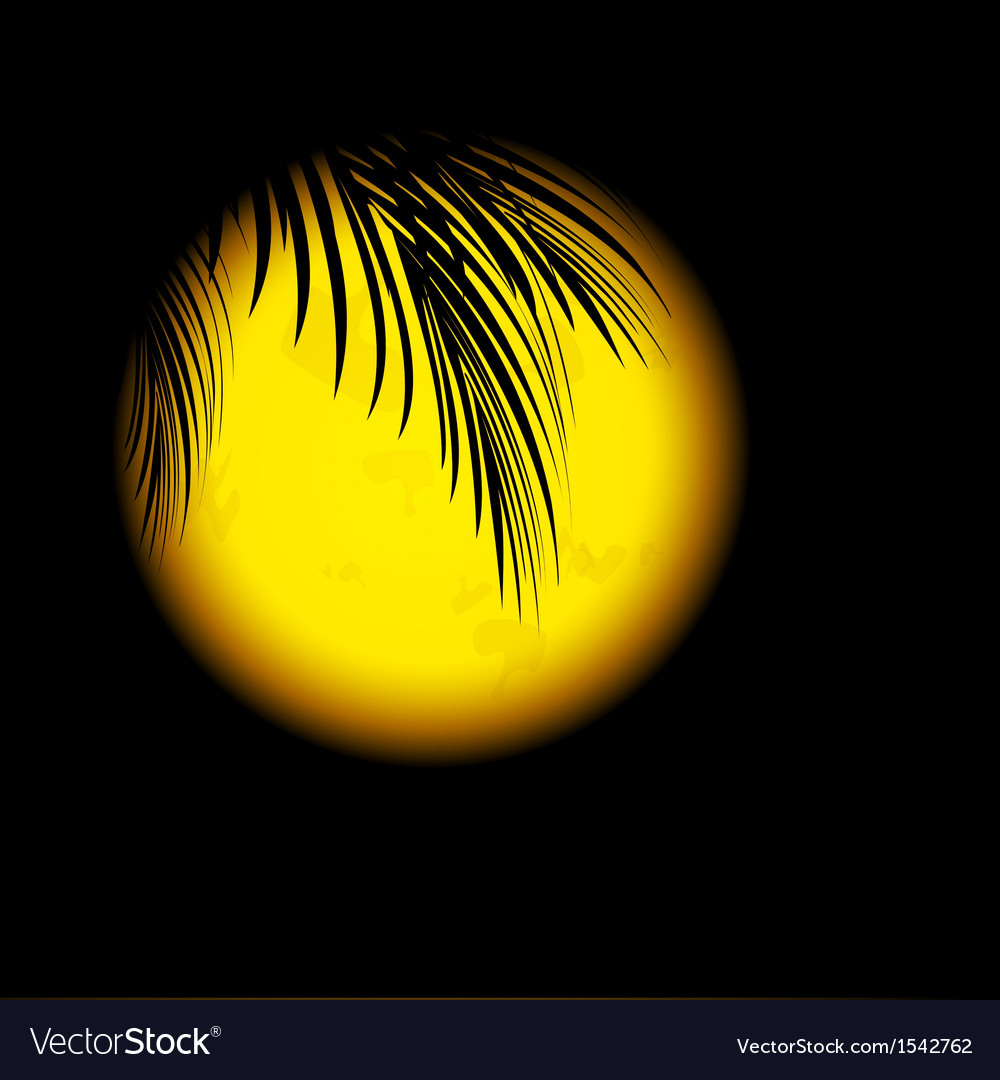 Tropic night vector | Price: 1 Credit (USD $1)