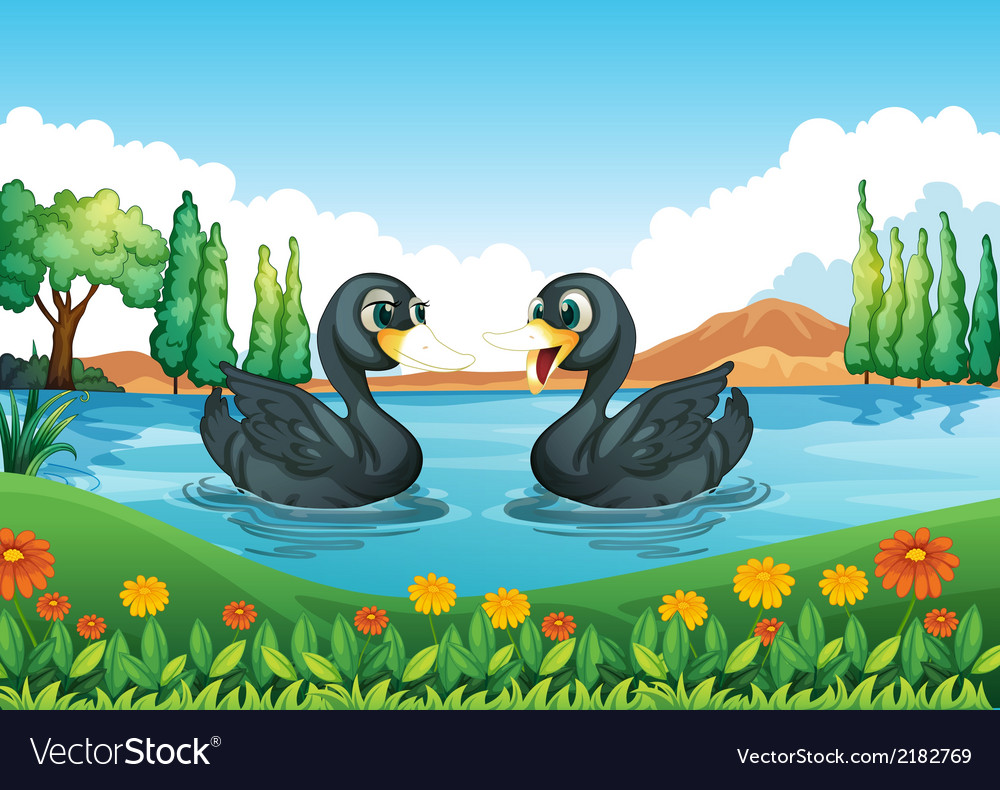 A river with two ducks vector | Price: 3 Credit (USD $3)