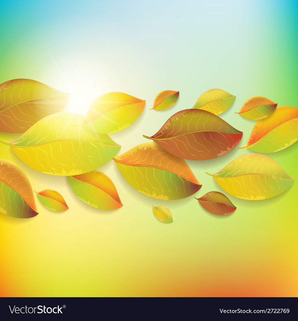 Colorful background with autumn colorful leaves vector | Price: 1 Credit (USD $1)