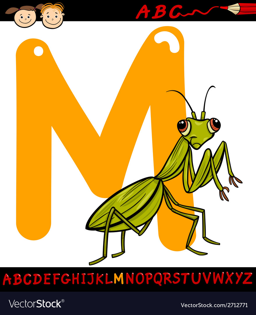 Letter m for mantis cartoon vector | Price: 1 Credit (USD $1)