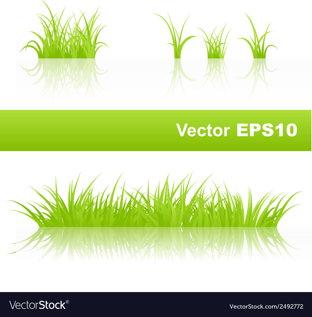 Green grass set vector | Price: 1 Credit (USD $1)