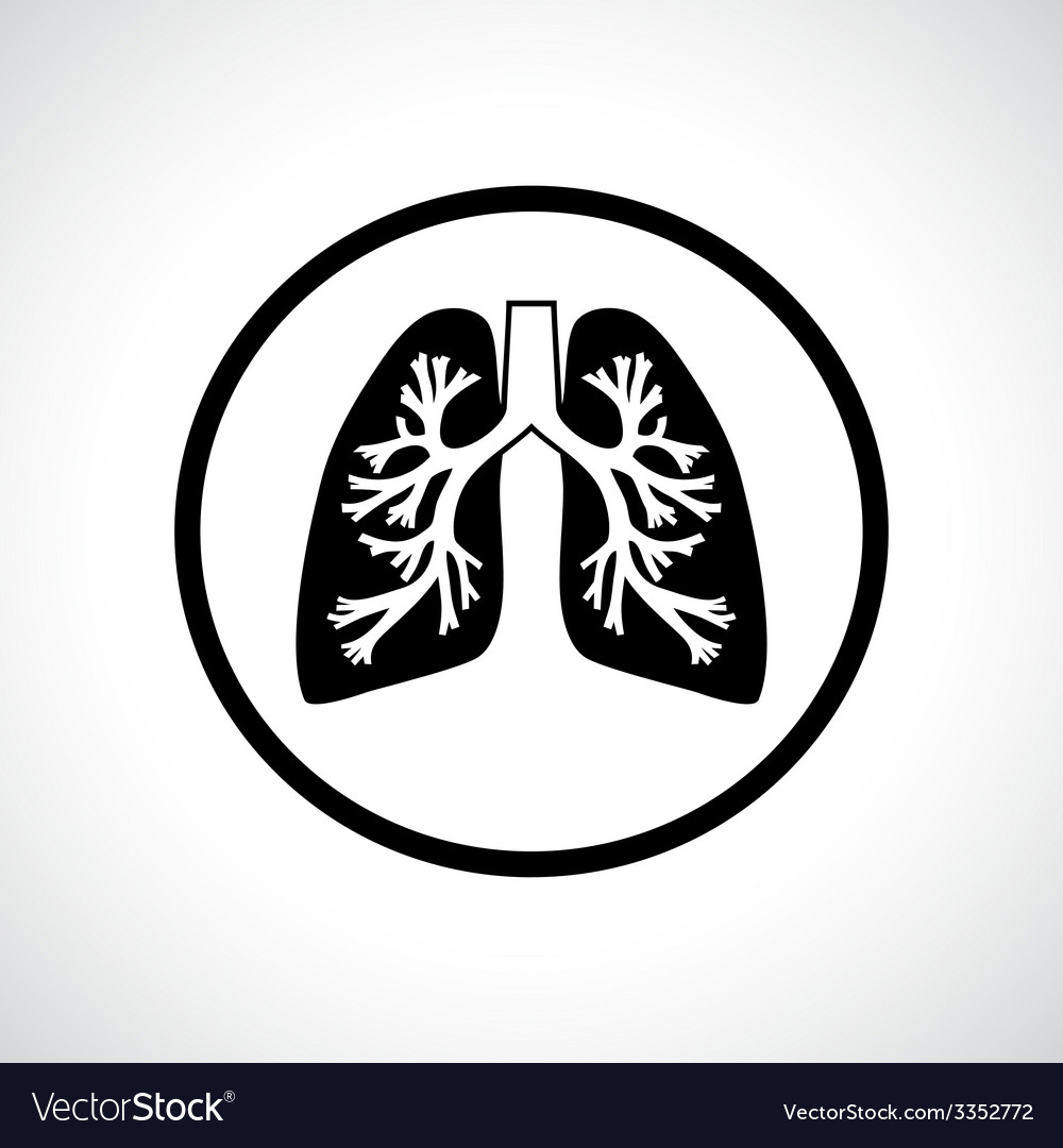 Lungs icon vector | Price: 1 Credit (USD $1)