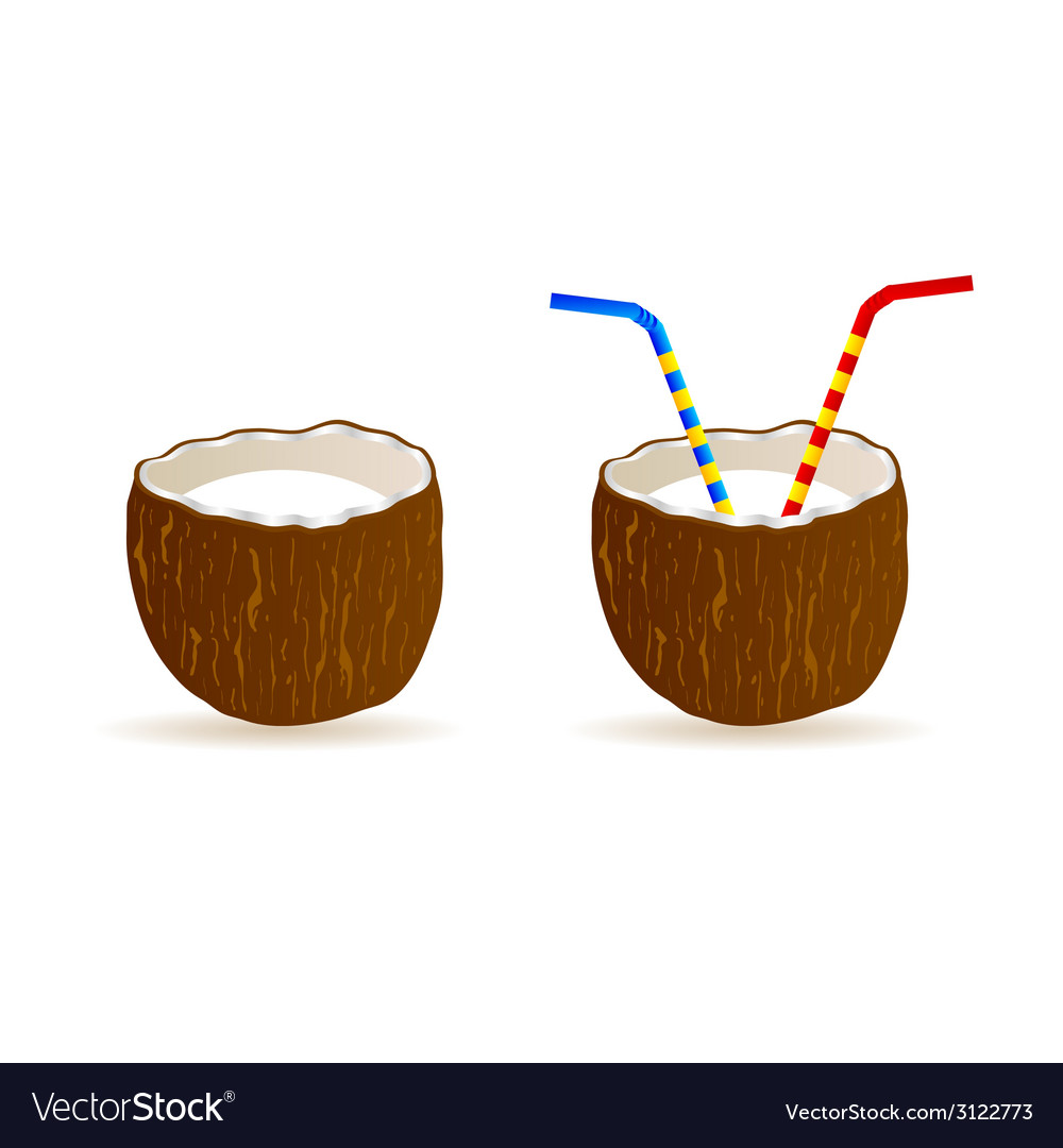Coconut and two straws vector | Price: 1 Credit (USD $1)