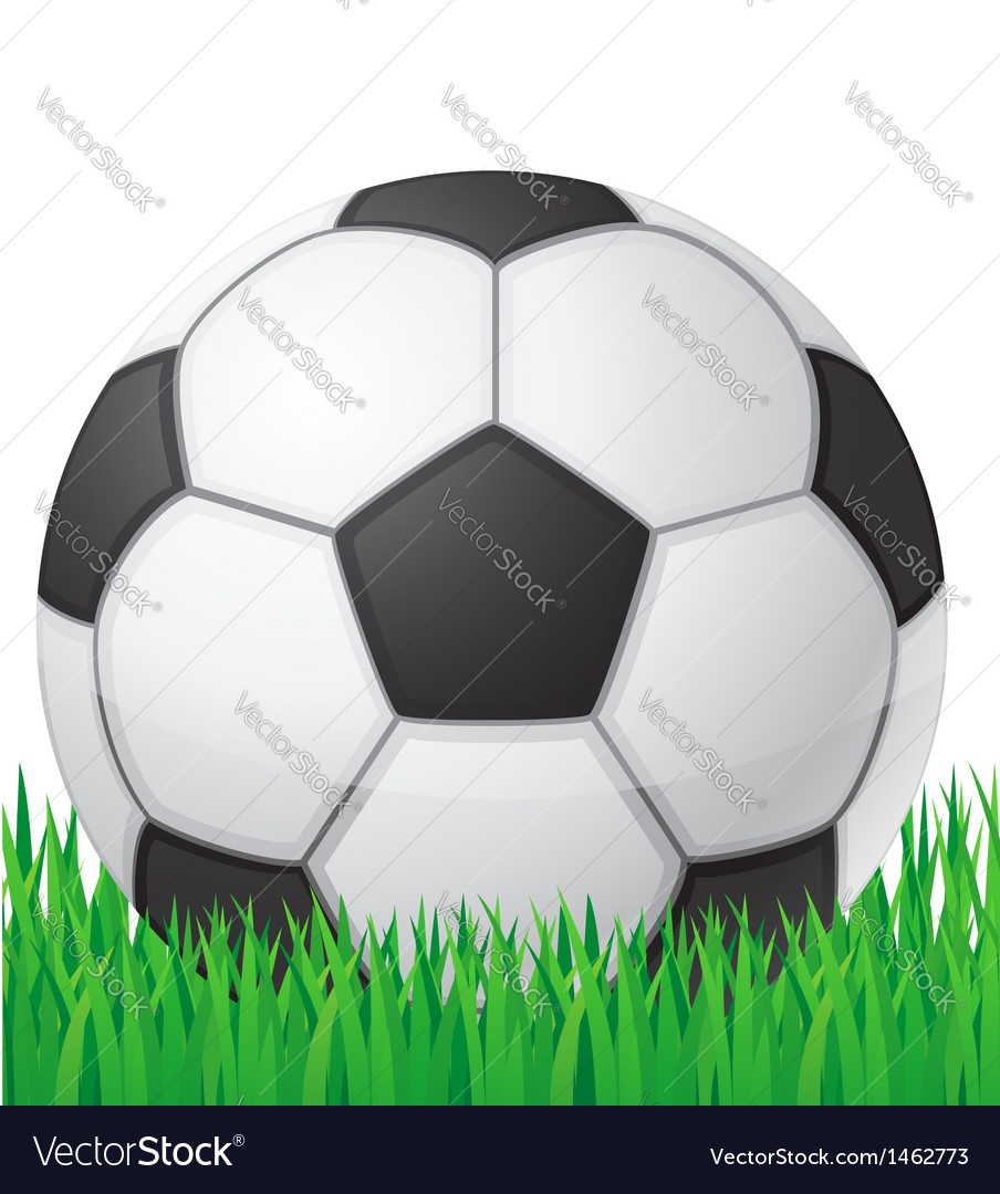Football soccer ball in grass vector | Price: 1 Credit (USD $1)
