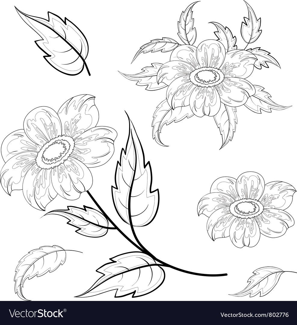 Flowers and leaves dahlia contours vector | Price: 1 Credit (USD $1)
