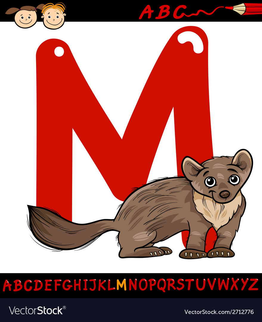 Letter m for marten cartoon vector | Price: 1 Credit (USD $1)