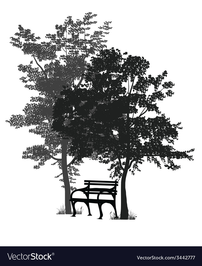 Bench and trees vector | Price: 1 Credit (USD $1)