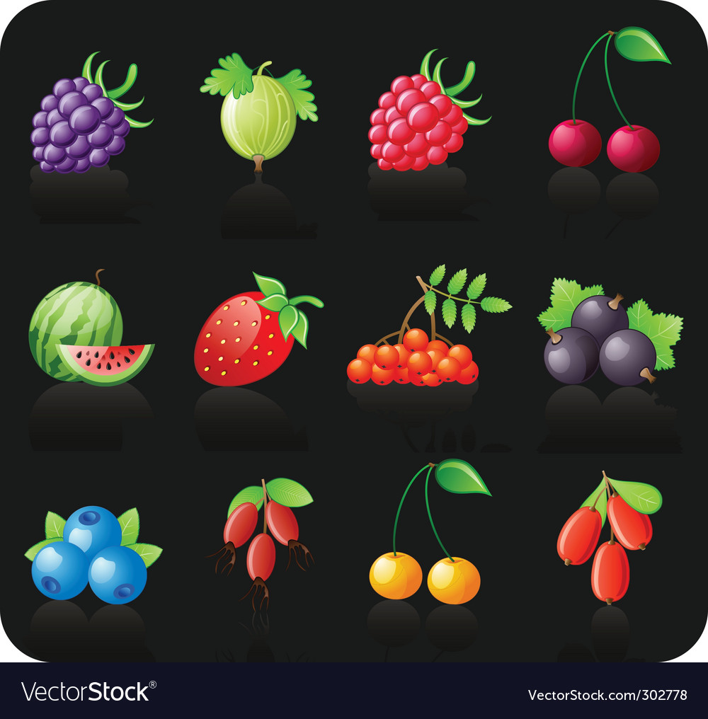 Berries black icon set vector | Price: 1 Credit (USD $1)