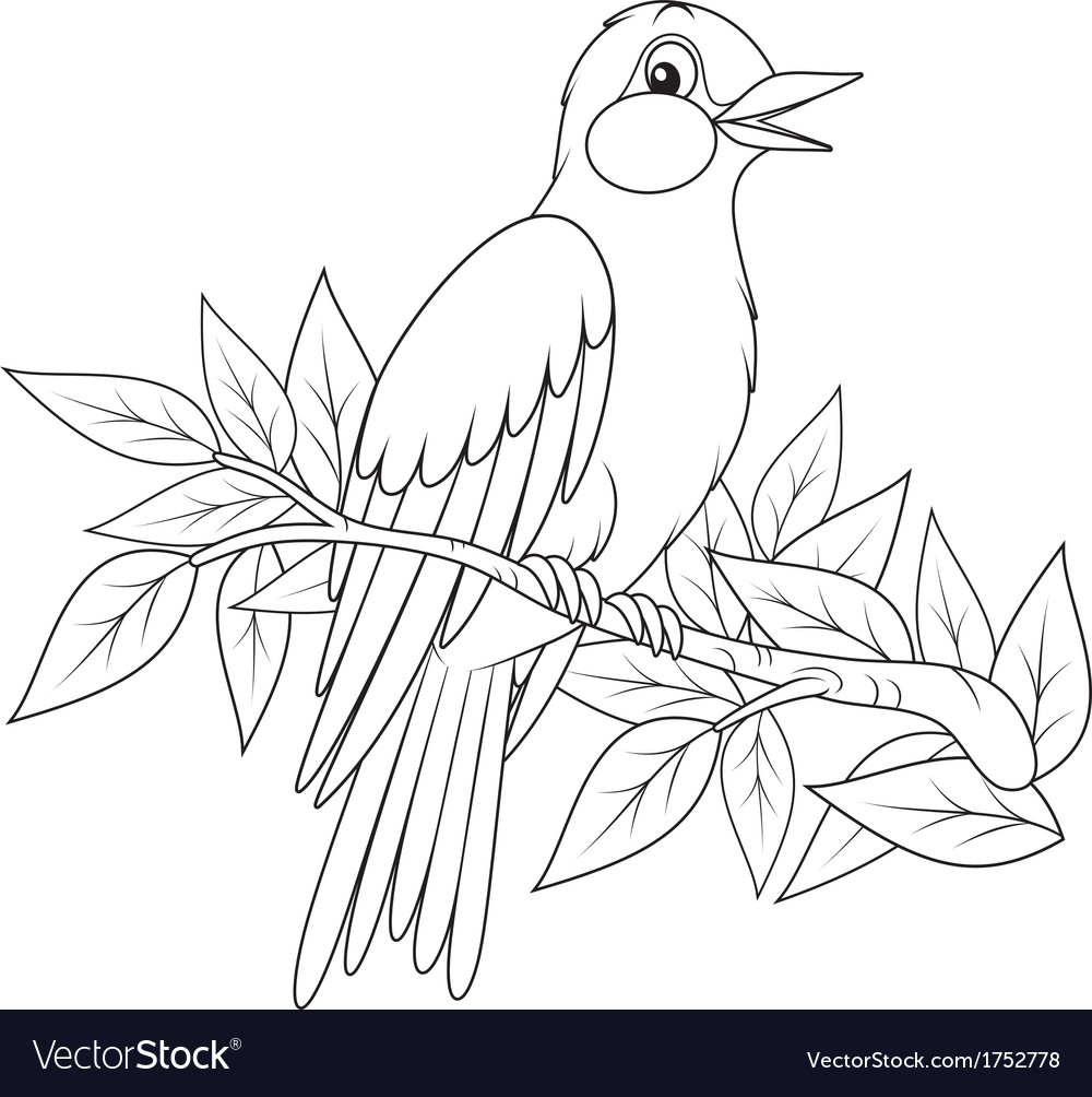 Oriole vector | Price: 1 Credit (USD $1)