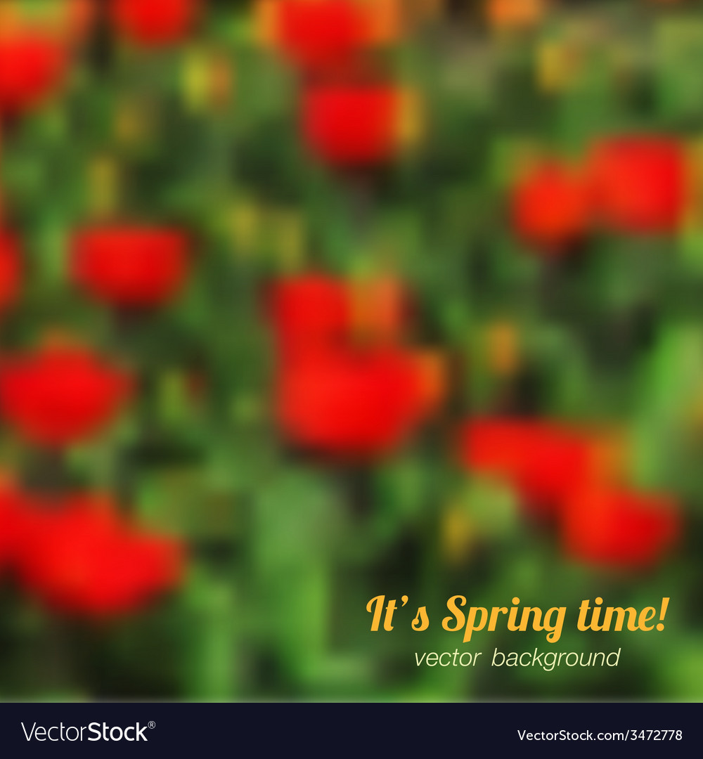 Spring background with red tulips vector | Price: 1 Credit (USD $1)