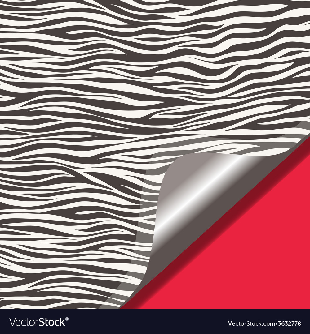 Zebra texture and red background vector | Price: 1 Credit (USD $1)