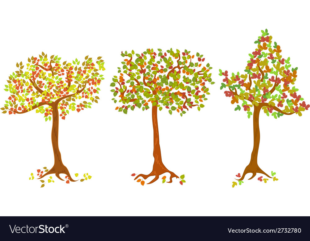 A set of autumn trees vector | Price: 1 Credit (USD $1)
