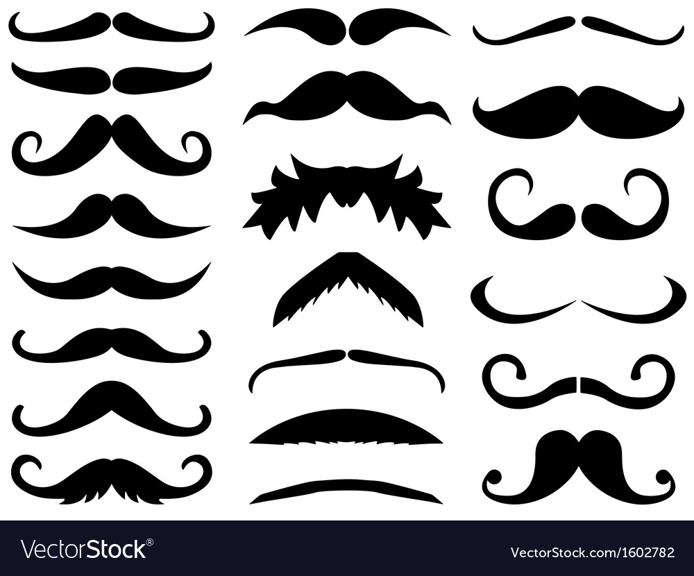 Mustache vector | Price: 1 Credit (USD $1)