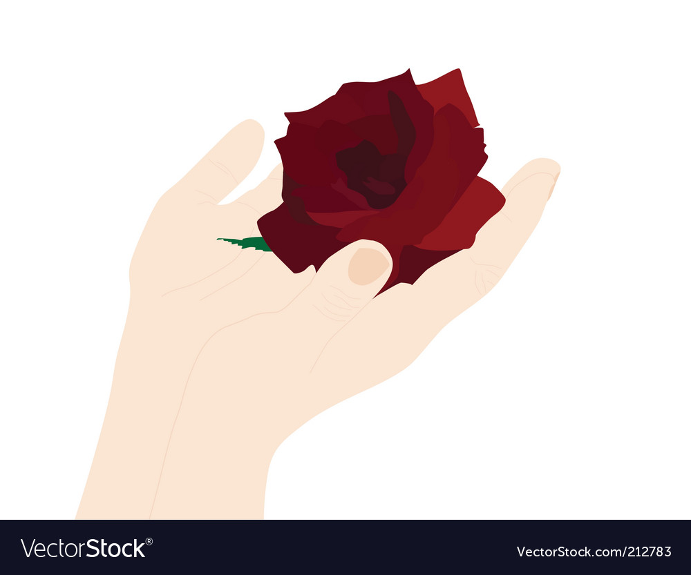 Hand with rose vector | Price: 1 Credit (USD $1)