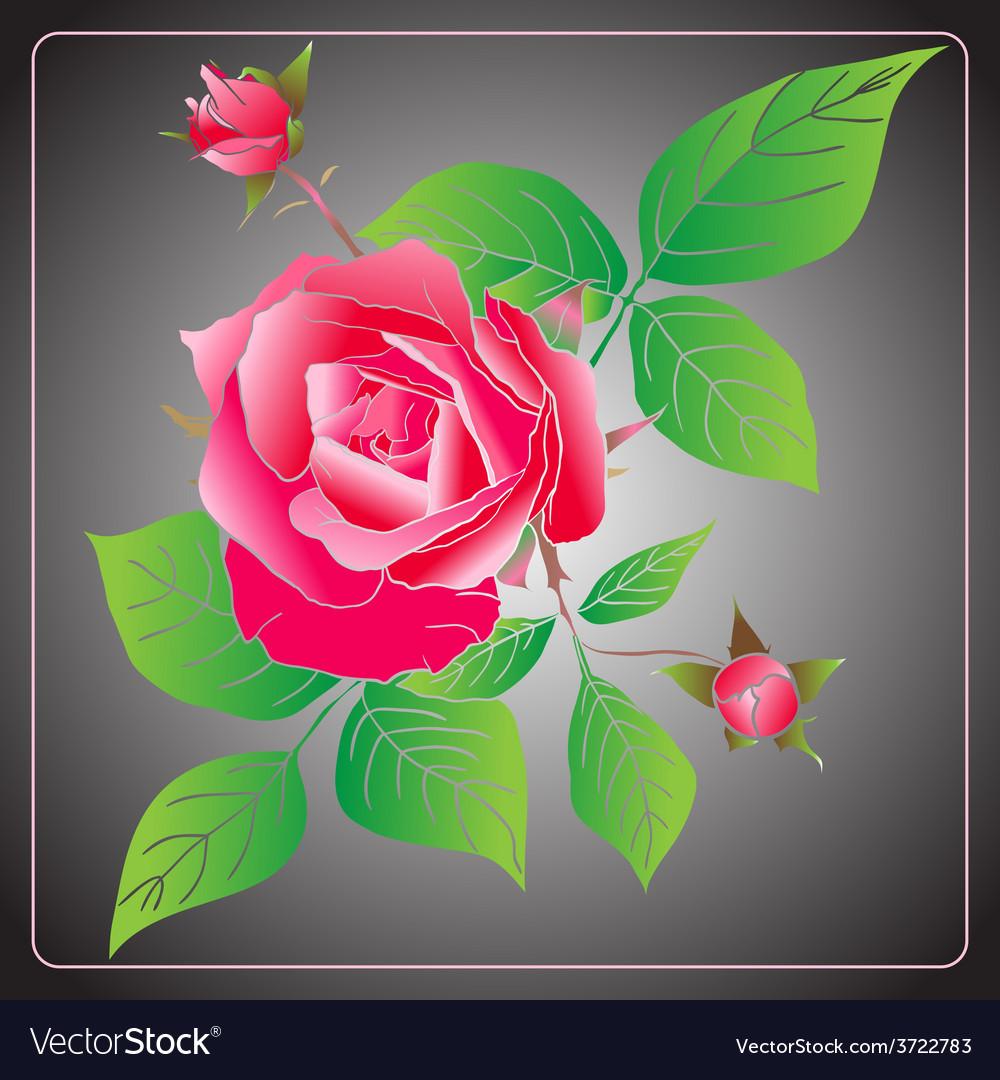 Stencil roses vector | Price: 1 Credit (USD $1)