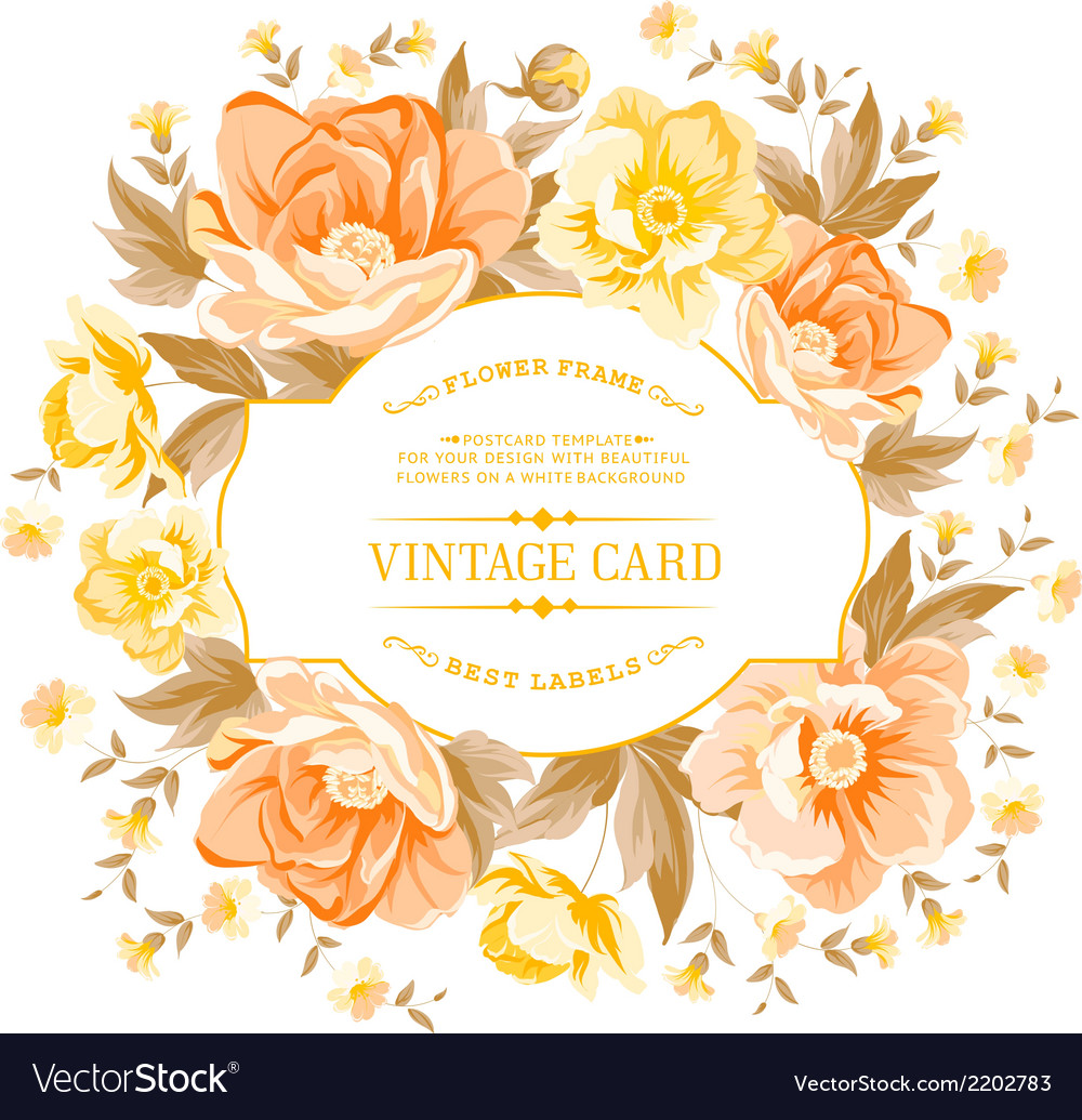 Vintage frame of yellow flowers on a white vector | Price: 1 Credit (USD $1)
