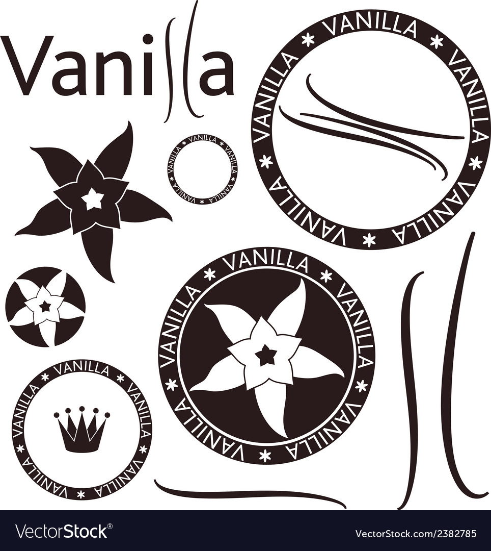 Vanilla vector | Price: 1 Credit (USD $1)