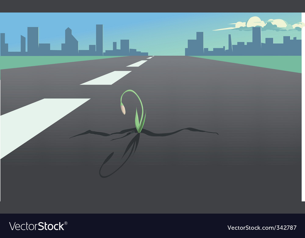 Flower in the asphalt road vector | Price: 1 Credit (USD $1)
