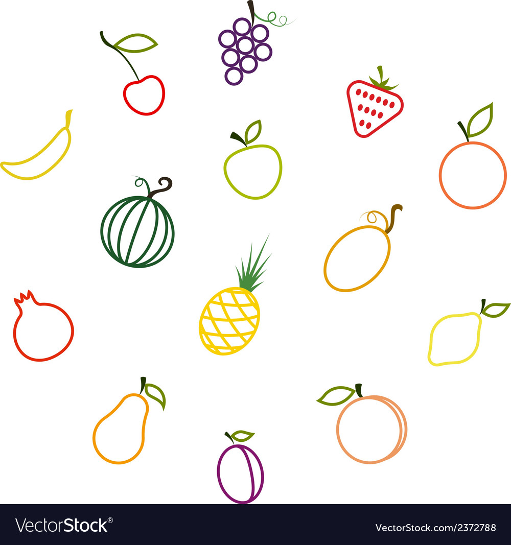 Contours of the fruit vector | Price: 1 Credit (USD $1)