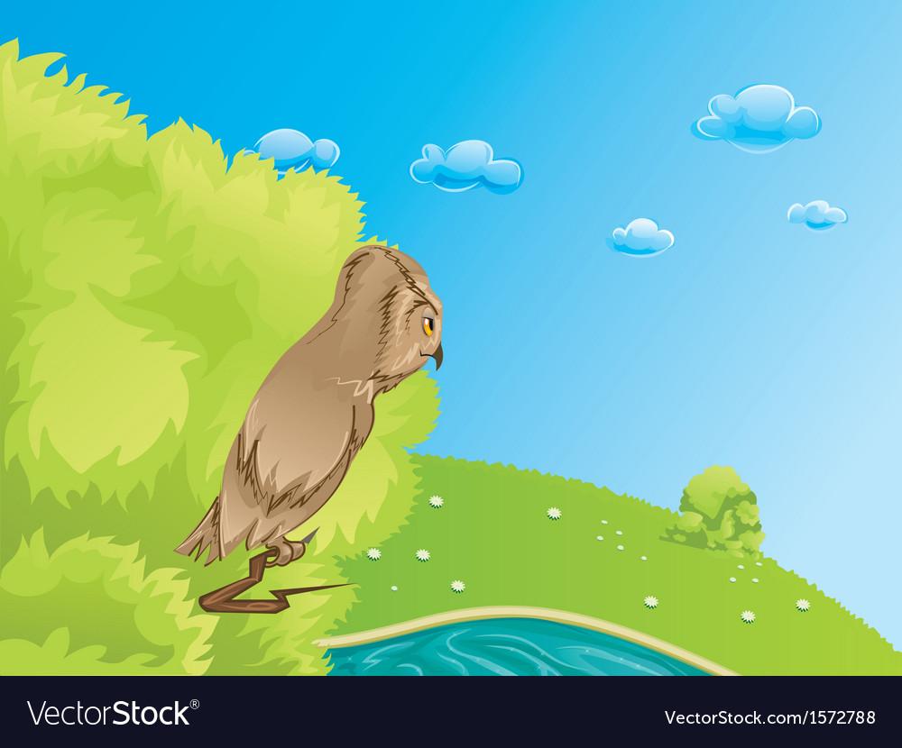 Owl vector   Price: 1 Credit (USD $1)