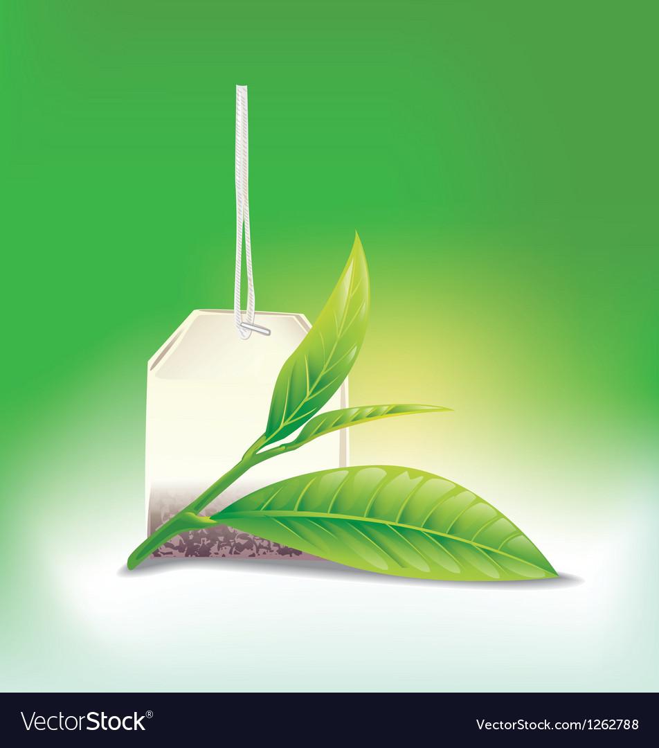 Tea leaf vector   Price: 3 Credit (USD $3)