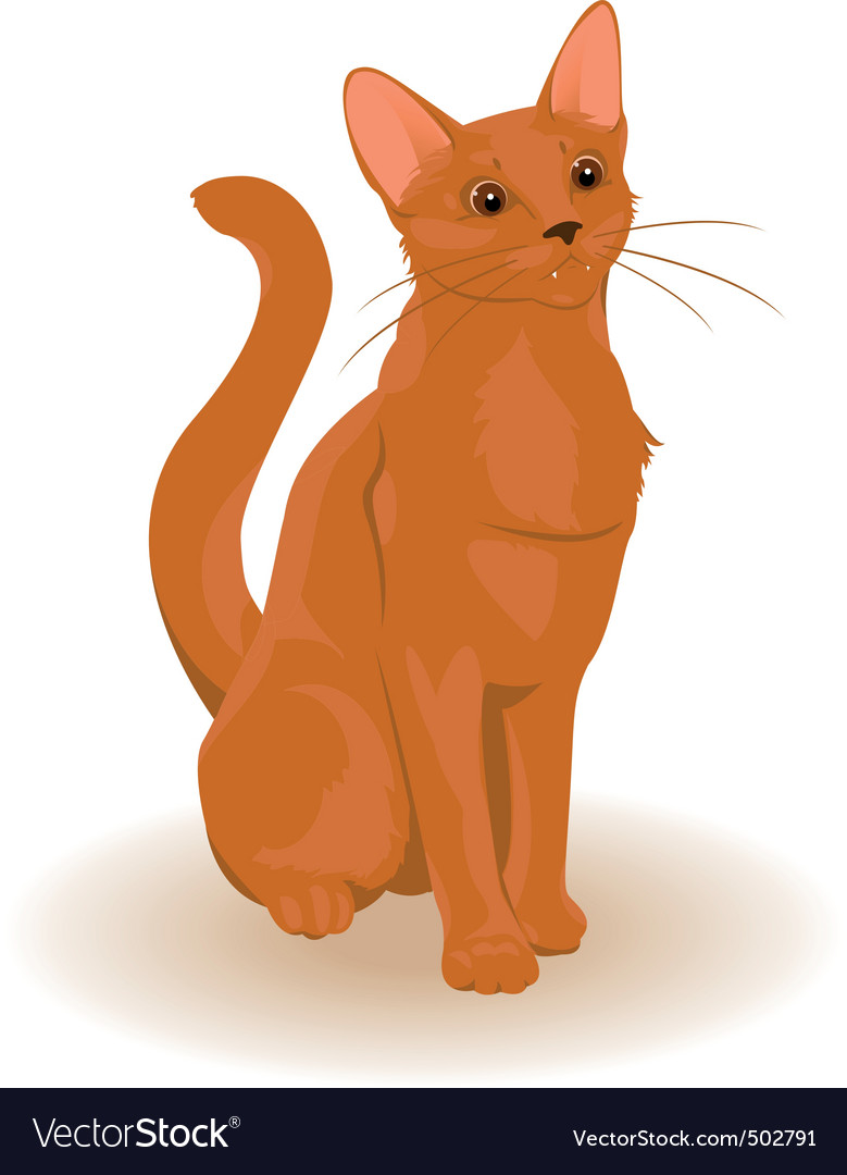 Cartoon cat vector | Price: 1 Credit (USD $1)