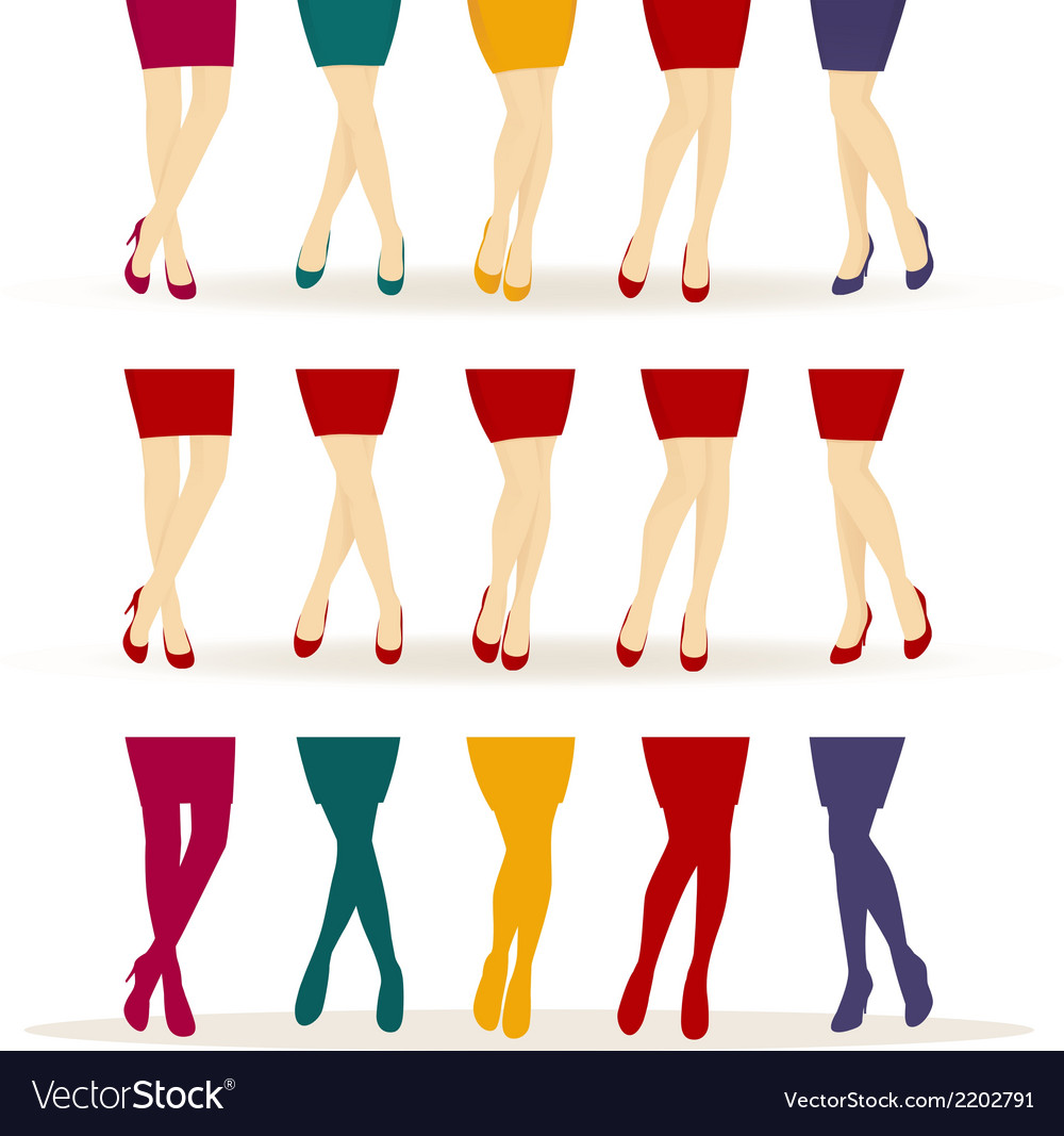 Female legs with colorful shoes vector | Price: 1 Credit (USD $1)