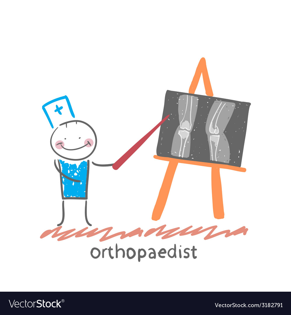 Orthopaedist shows an x-ray vector | Price: 1 Credit (USD $1)