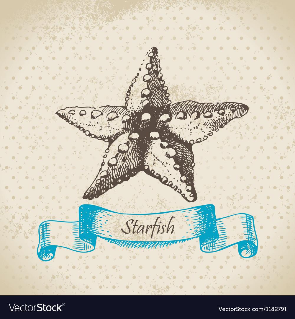 Starfish hand drawn vector | Price: 1 Credit (USD $1)