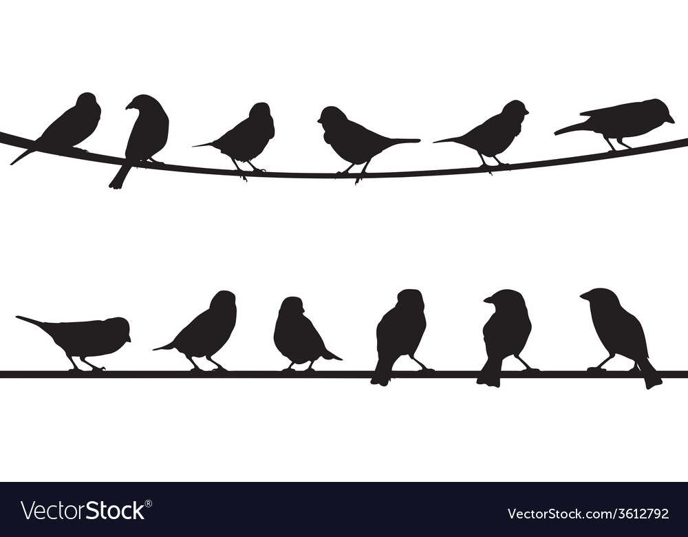 Birds on string vector | Price: 1 Credit (USD $1)
