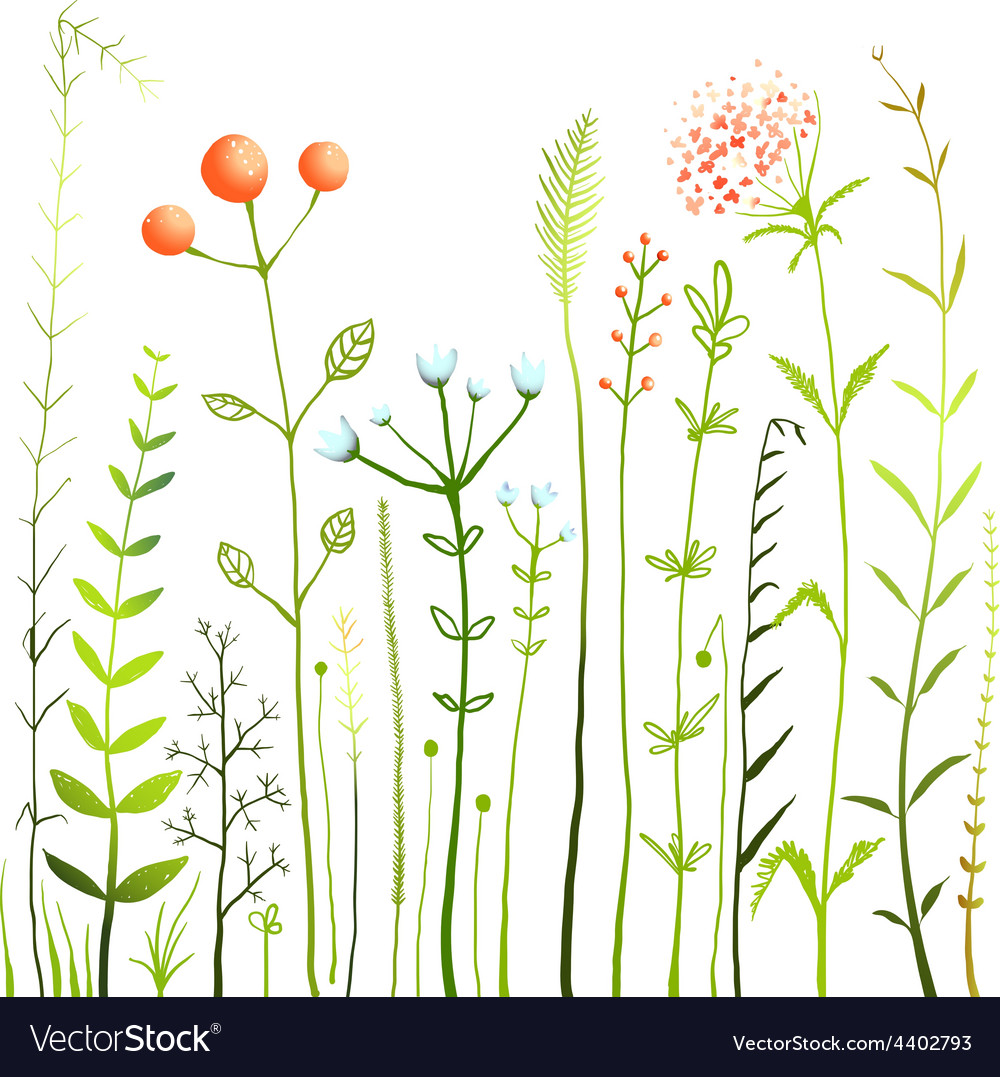 Flowers and grass on white grassland collection vector | Price: 1 Credit (USD $1)