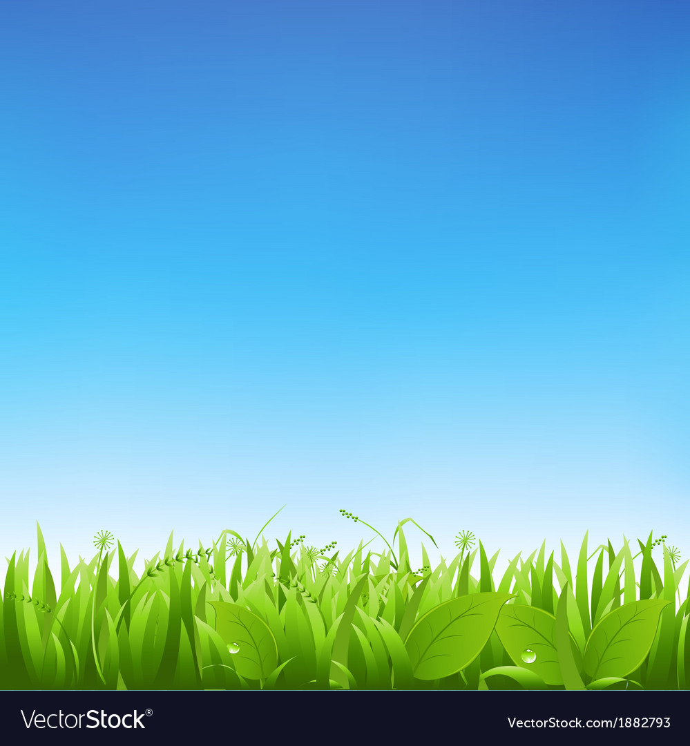 Grass and sky vector | Price: 1 Credit (USD $1)