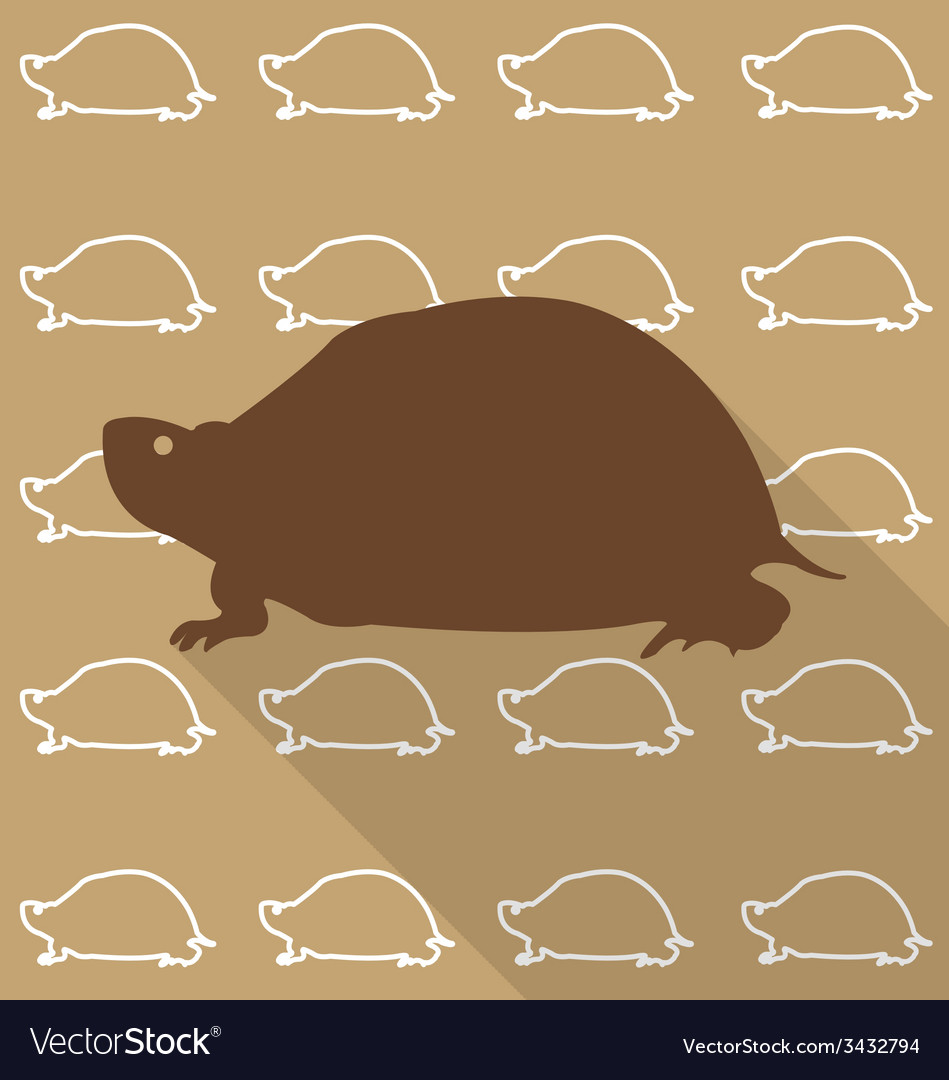 Turtle vector | Price: 1 Credit (USD $1)