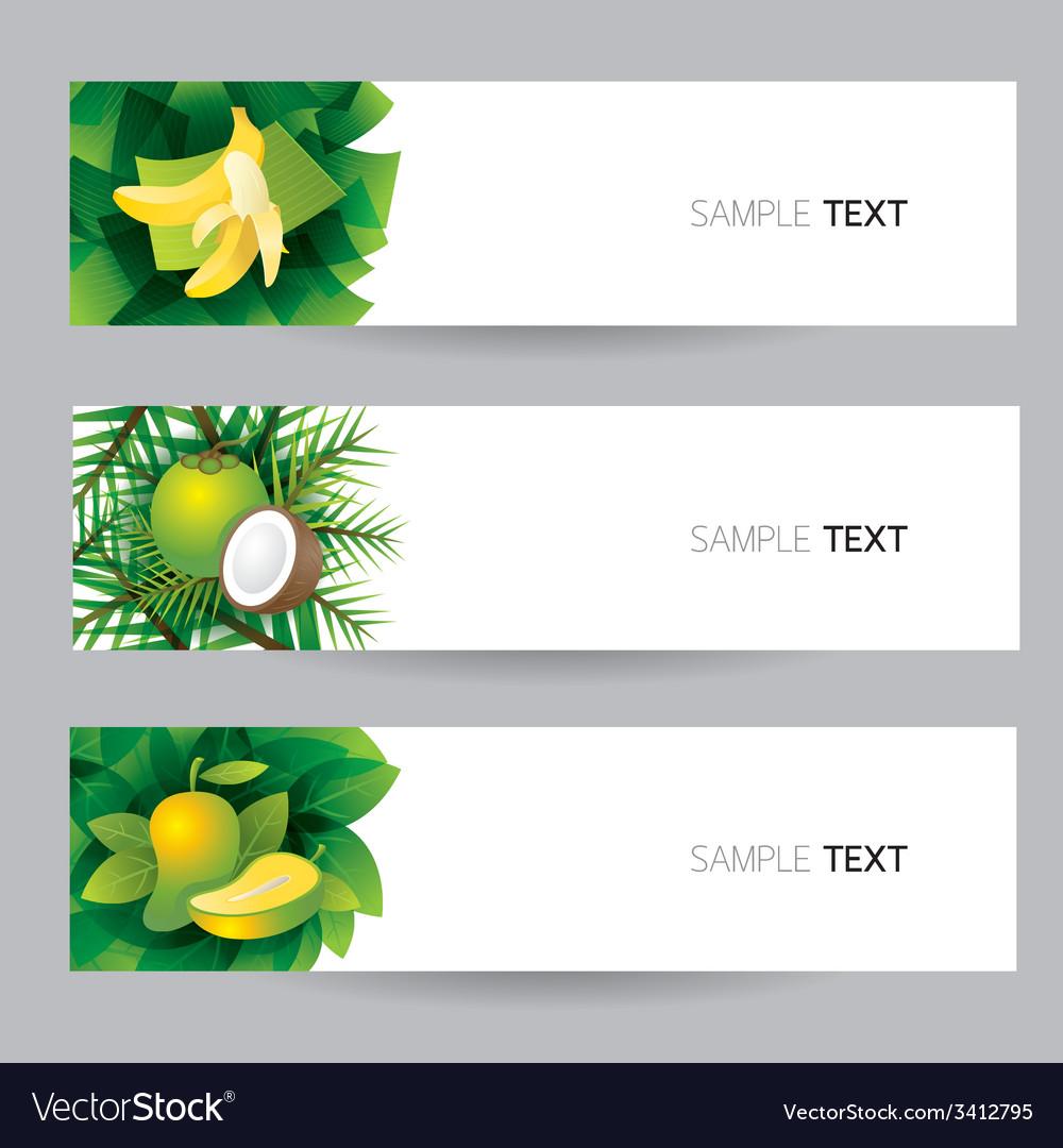 Banana coconut mango banner vector | Price: 1 Credit (USD $1)