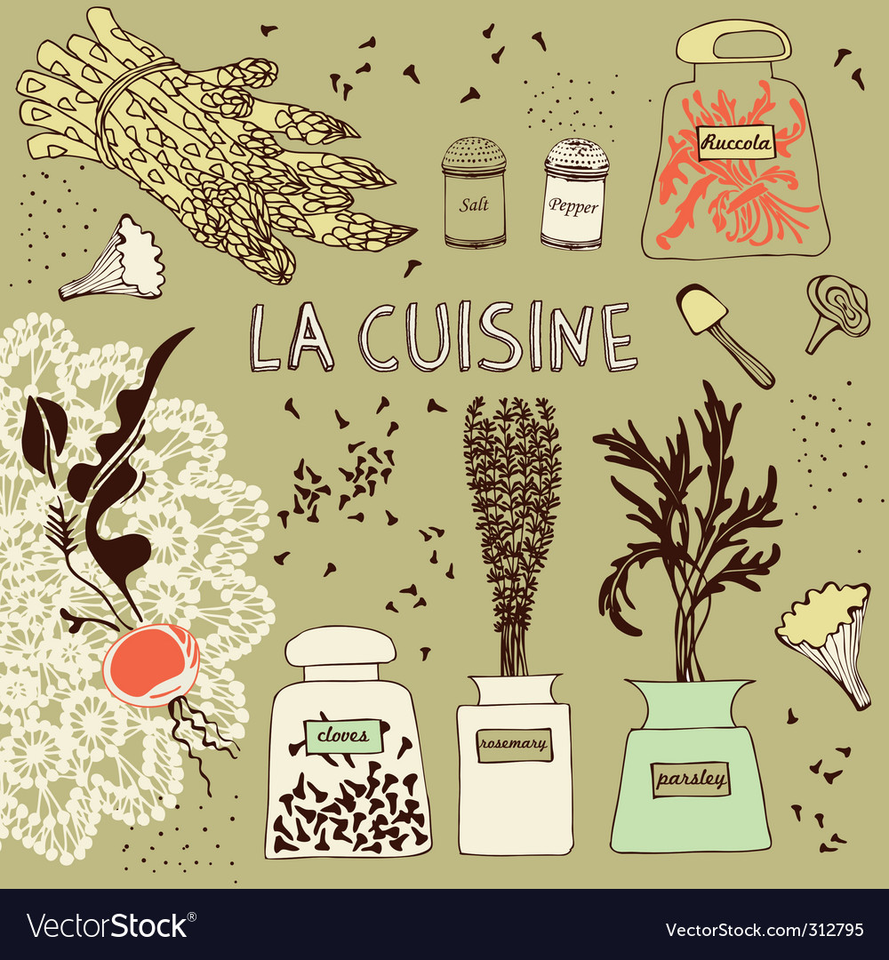 Card with vegetables and spice vector | Price: 1 Credit (USD $1)