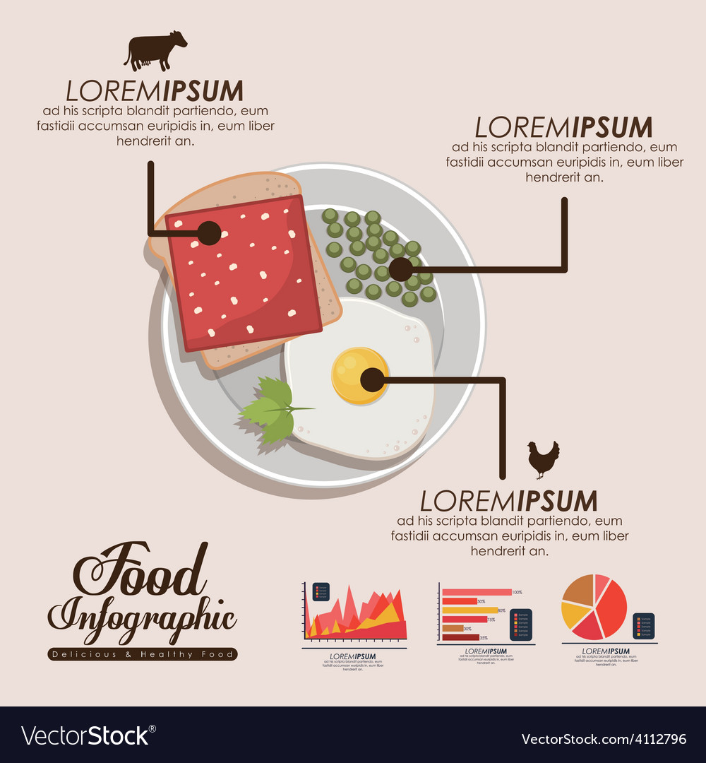 Food infographic design vector | Price: 1 Credit (USD $1)