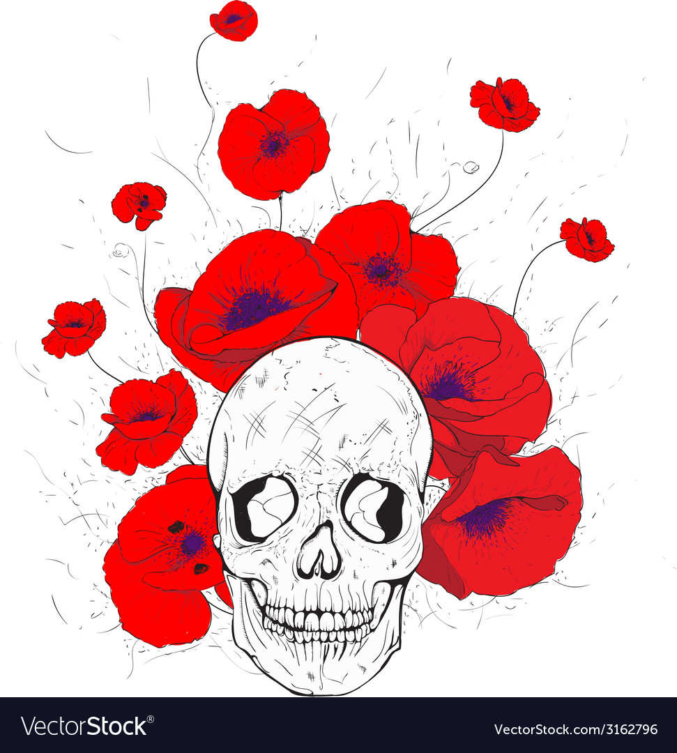 Skull and poppies vector | Price: 1 Credit (USD $1)