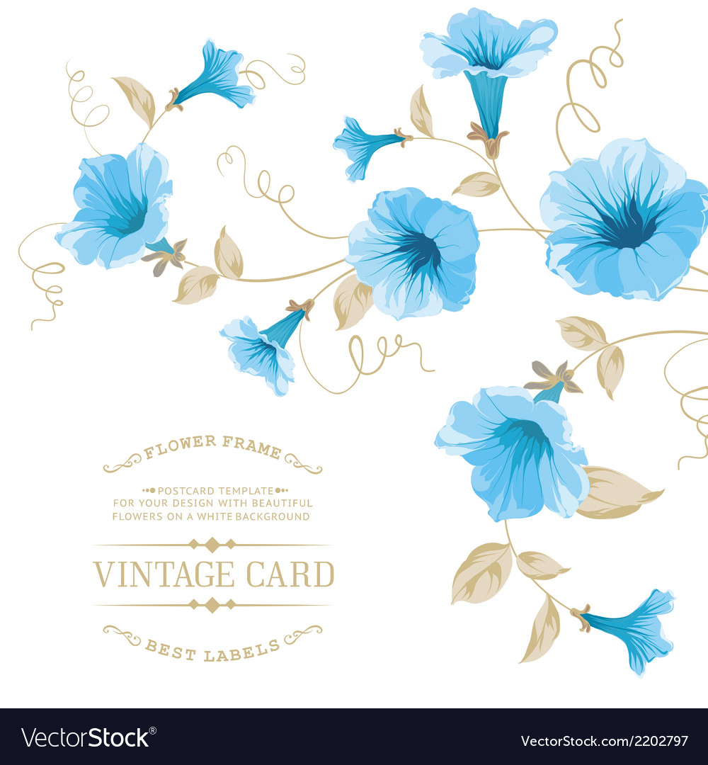 Design of vintage floral card vector | Price: 1 Credit (USD $1)