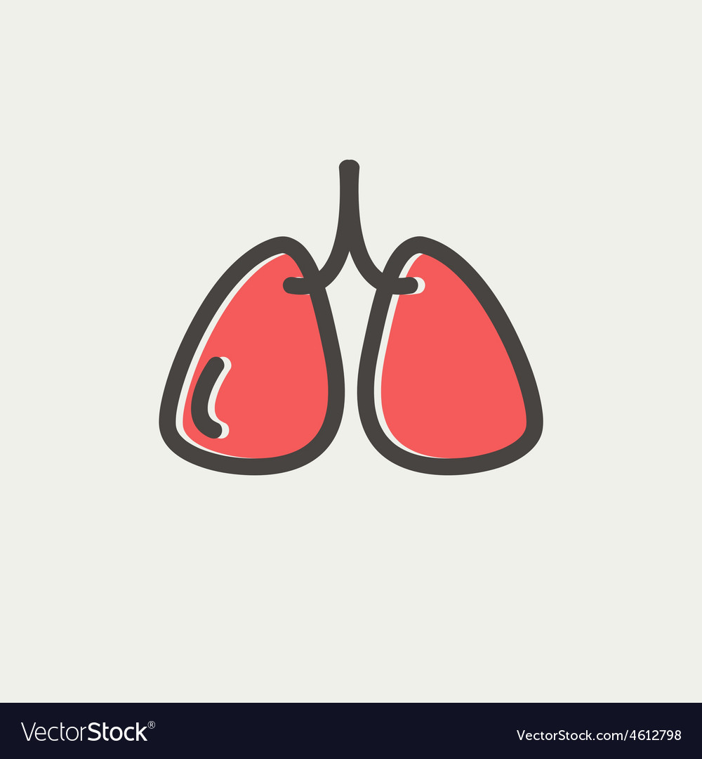 Lungs thin line icon vector | Price: 1 Credit (USD $1)