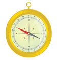 Compass gold color vector