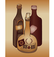 Old bottles vector
