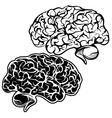 Human brain sketch cartoon vector