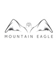 Mountain eagle design template vector