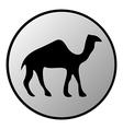 Camel button vector