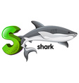 A letter s for shark vector