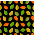 Seamless pattern with colored leaves on black vector